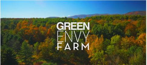 Green-Envy-Video